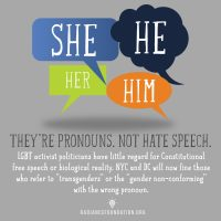 """Pronouns-Not Hate Speech"" by The Radiance Foundation"
